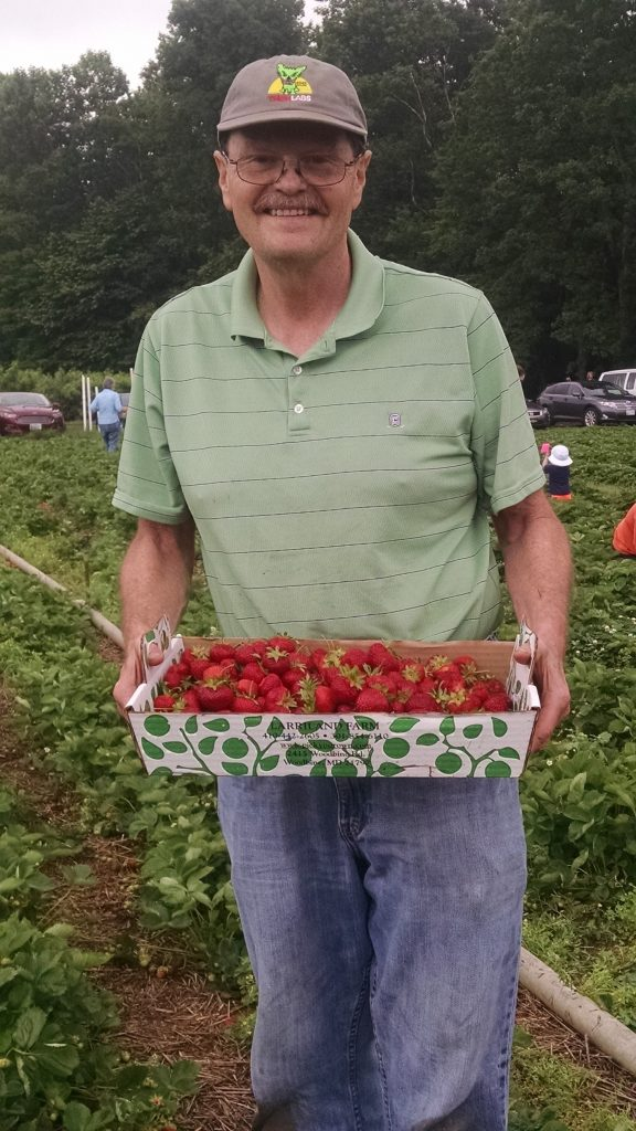 Standing man holding a bunch of strawberries