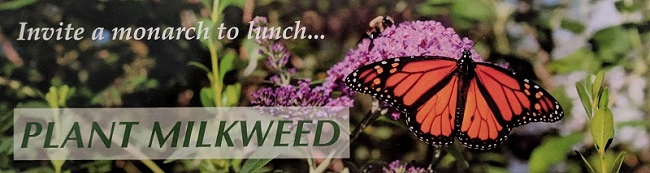 Plant Milkweed bookmark